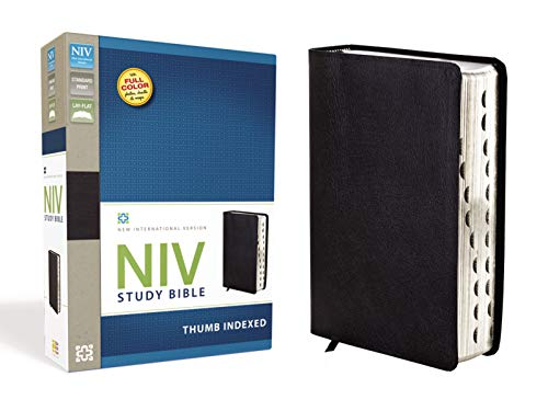 NIV Study Bible, Premium Leather, Black, Red Letter Edition
