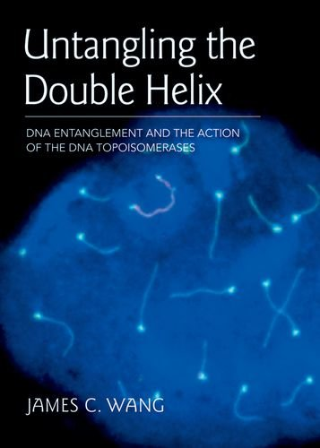 Untangling the Double Helix