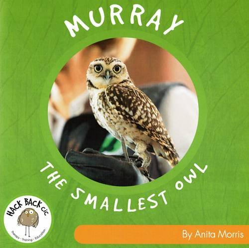 Murray the Smallest Owl
