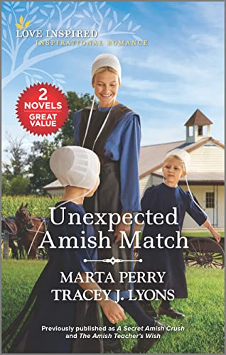 Unexpected Amish Match