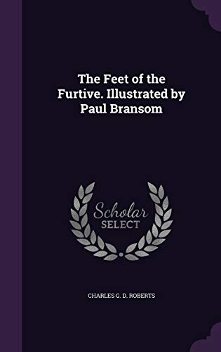 The Feet of the Furtive. Illustrated by Paul Bransom