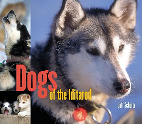 Dogs Of The Iditarod