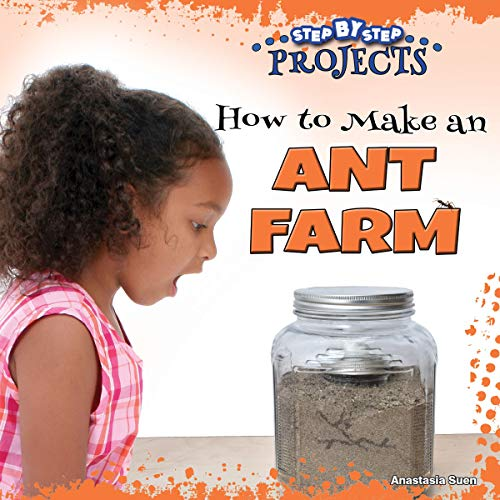 How to Make an Ant Farm