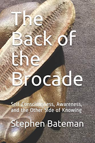 The Back of the Brocade