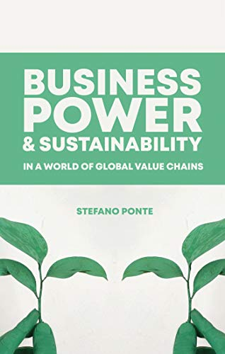 Business, Power and Sustainability in a World of Global Value Chains