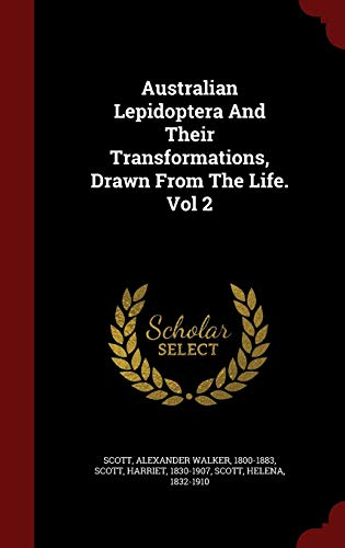 Australian Lepidoptera and Their Transformations, Drawn from the Life. Vol 2