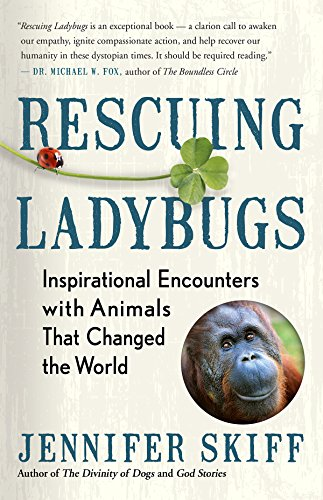 Rescuing Ladybugs : Inspirational Encounters with Animals That Changed the World