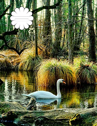 Peaceful Swan : Compositional Notebook